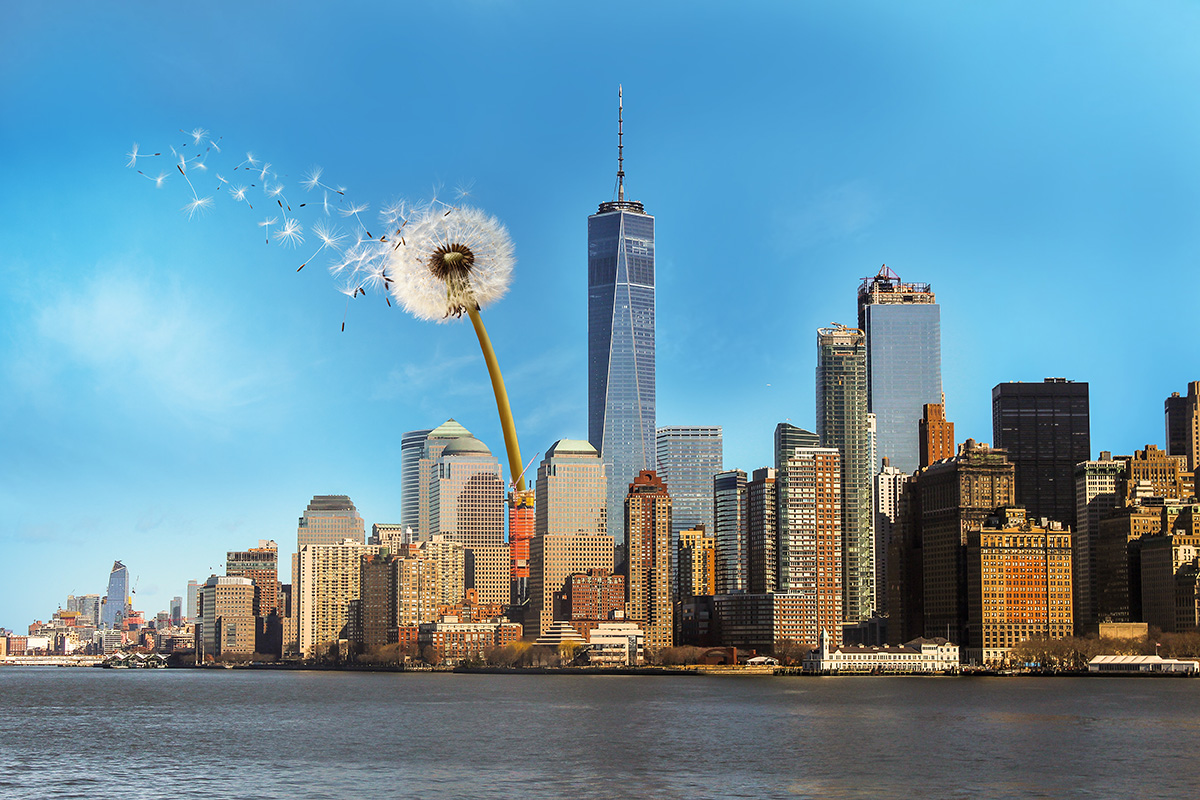 New York City skyline with a large white dandelion blowing dandelion seeds into the sky