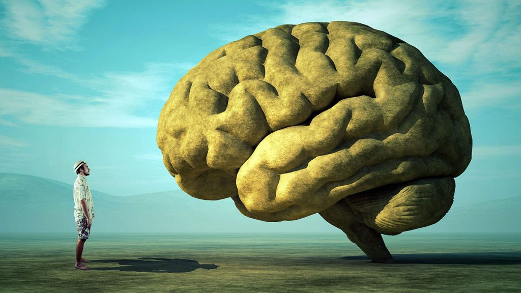 young man in open land observing a large-scale human brain
