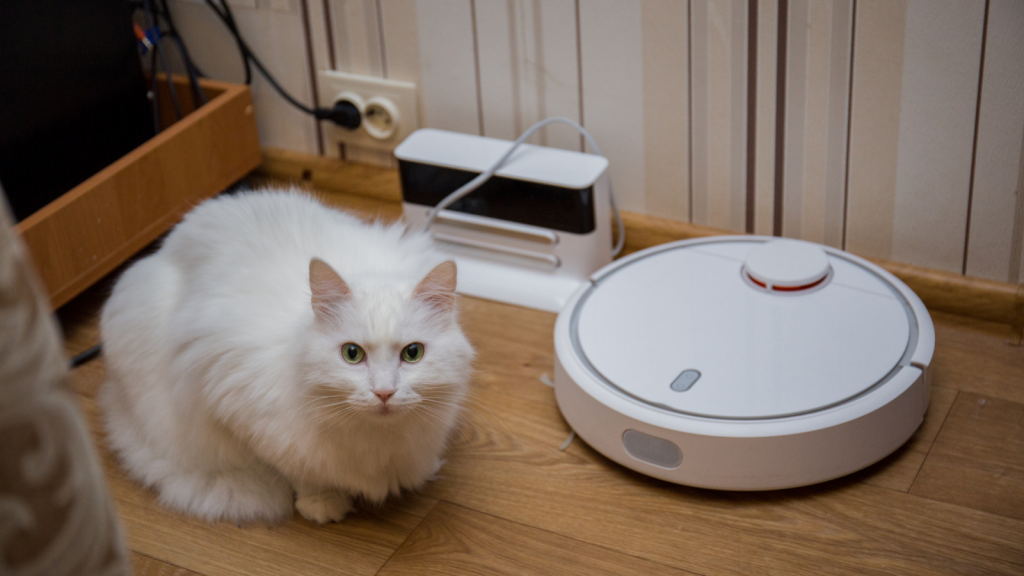 Artificial intelligence can recognize patterns like what is a cat and what is a robot.