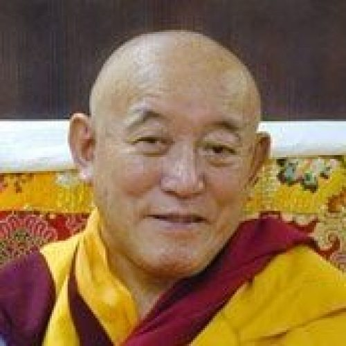 headshot of Denma Locho Rinpoche